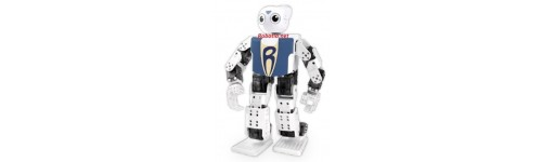 CURSOS DE ROBOTS  HUMANOIDES